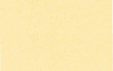 Fotokarton 50x70cm vanille